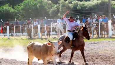 Photo of 27º Rodeio Crioulo Estadual é atração em Garibaldi