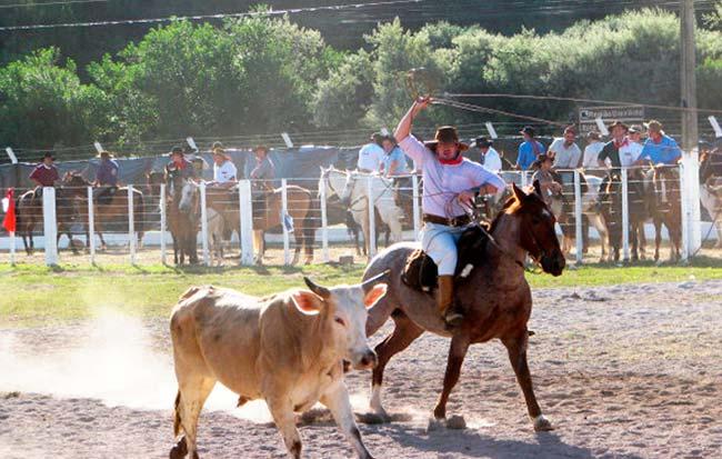 27º Rodeio Crioulo Estadual é atração em Garibaldi - Revista News