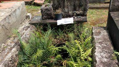 Photo of São Leopoldo convoca proprietários de túmulos abandonados