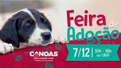 Photo of Canoas realiza Feira de Adoção neste sábado