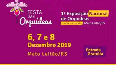 Photo of Mato Leitão realiza 1ª Exposição Nacional de Orquídeas