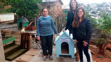 Photo of Projeto Posse Responsável incentiva adoção de cães em Bento Gonçalves