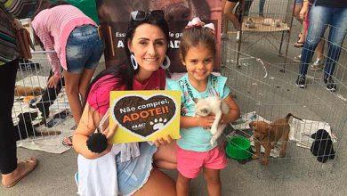 Photo of Itapema realiza feira mensal de adoção neste sábado, 01/02