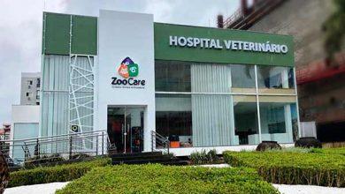 Photo of Primeiro Hospital Veterinário de Balneário Camboriú atende 24 horas