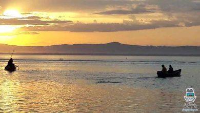 Photo of Camarão rosa está com a pesca liberada em Tramandaí
