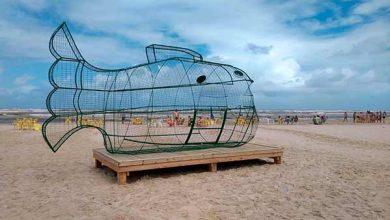 Photo of Ecoponto de garrafas pet é instalado na orla de Imbé