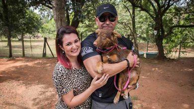 Photo of Casal adota cachorrinha amputada em São Leopoldo