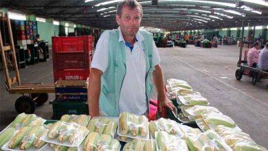 Photo of Estiagem afeta preços de hortifrutigranjeiros da Ceasa