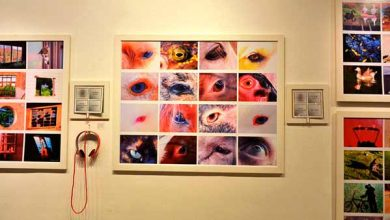 Photo of Caxias do Sul: nova exposição na Galeria Gerd Bornheim