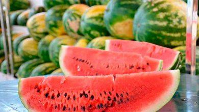 Photo of Feira da Melancia 2020 destaca a qualidade da fruta em Taquara