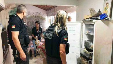Photo of Casa em Imbé tinha cães congelados no freezer