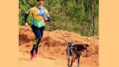 Photo of Trail de Outono acontece neste domingo em Sapiranga