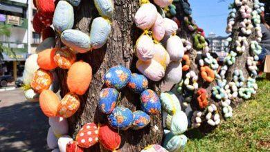 Photo of Doação de cascas de ovos para a Páscoa em Frederico Westphalen