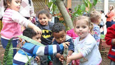 Photo of Iniciam aulas da Educação Infantil municipal de Porto Alegre