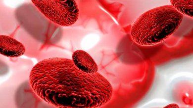 Photo of Fevereiro Laranja alerta para a detecção precoce de leucemia