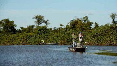 Photo of ICMBio autoriza pesca esportiva em unidades de conservação ambiental