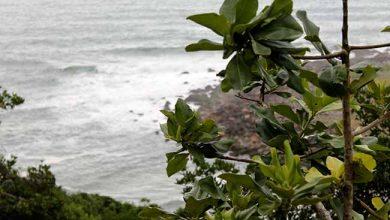 Photo of A água do mar e seus benefícios para a saúde