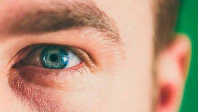Photo of Estresse oxidativo compromete a visão