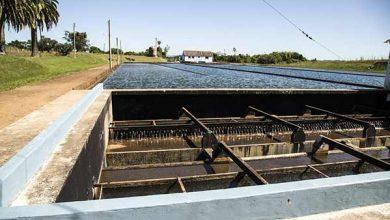 Foto de Pelotas terá falta de água nesta segunda-feira (14)