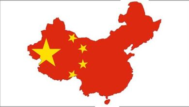 Photo of China alega ter detectado coronavírus em asas de galinha importadas do Brasil